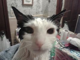 Ghosty Face getting towel dried #3 by PiccoloFreakNamick