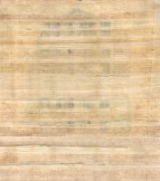Papyrus texture - 01 by LunaNYXstock