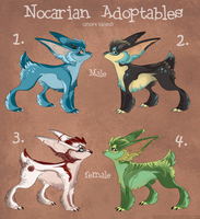 Free Nocarian Adopts: CLOSED by Yuroboros