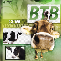 COW PNG PACK by FreeError