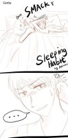 Gerita---APH--Sleeping Habit by aphin123