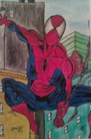 Spidey Water Colour by SilentEchoDC