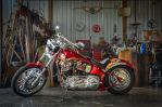 Custom Panhead by ShannonCPhotography