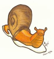 At a snail's pace... by processofwinter