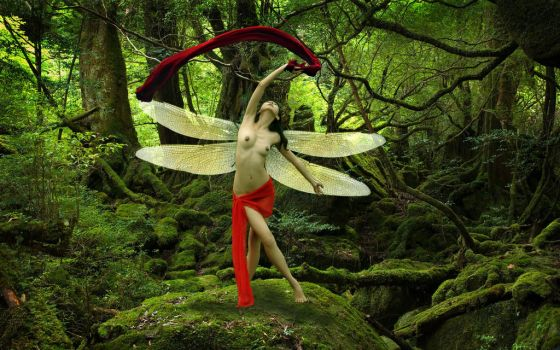 Forest-dance by herarip