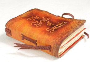 Book of Secrets pocket size by gildbookbinders