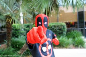 Deadpool Cosplay - Ocala Comic-Con by DonationForPlushies