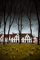 Beguinage Bruges by PhotographersClub