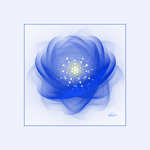 Blue Flower by baba49