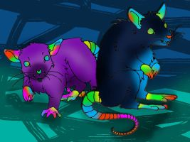 Spetrum lab rats by MatchCense