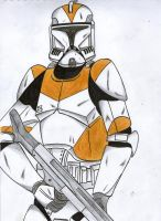 212nd Clone trooper by Funtimes