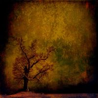 The tree of darkness by hearthy
