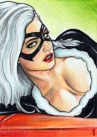 Black Cat Sketch Card 5 by veripwolf