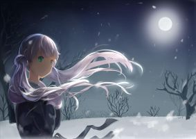 Snowy evening by Risa1