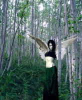 Forest Succubus by Gogha