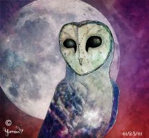 Faces of the Moon by Yarrow7