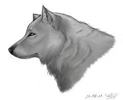 My first wolf by Jaglias