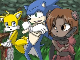 sonic, tails vivi shads and hi by Nishi06