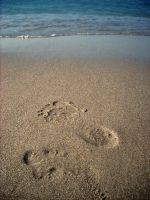 Footstep by xAnnca