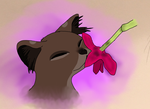 Always Stop To Smell The Flowers by FlowerPlushFox