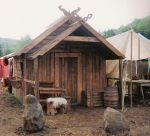 My viking home by Hrafenka