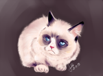 Grumpy cat Tarda by Luminofor