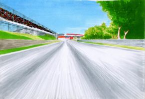 Interlagos3 by wkohama