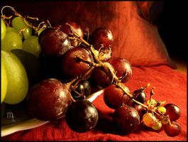 Grapes by turkill