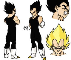 Vegeta Character Design Sheet by darkhawk5