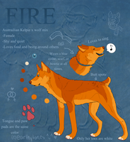 Fire Ref by earthytones