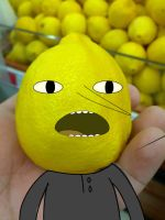 Real lemon lemongrab by netnavi20x5