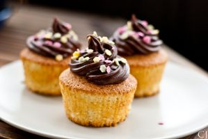 Cupcakes v.1 by CJacobssonFoto