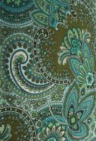 Paisley by X-virago-X