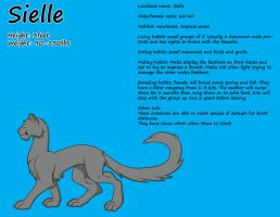 Female Sielle Reference by Leland-Adopts