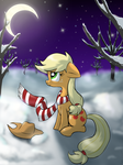 Solace of Winter by Rune-Blad3