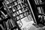 Library #2 by sariapolletta