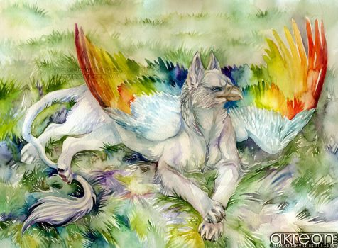 rainbow gryphon by akreon