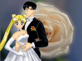 Wedding of Usagi and Mamoru by veterperemen