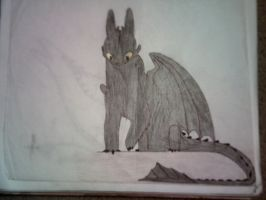 Here's Toothless by DRAGONLOVER101040
