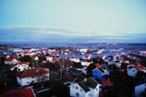 Fake Tilt-Shift Hono, Sweden by fastidious-cat