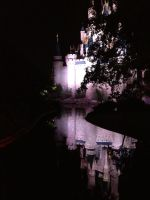 Disney castle during Night of Joy 2012 by Wolfhorsegirly