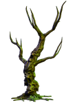 Spooky Tree 05 PNG Stock by Roys-Art