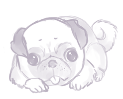sketch -- pug by onisuu