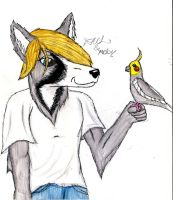 A wolf and His bird X3 by CosmicZ