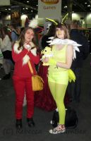 MCM - Flareon and Jolteon by DreamBex