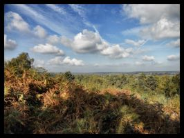 Surrey View by Arawn-Photography