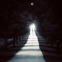 To The Light by w1zzy