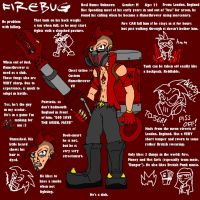 Fire-Bug Reference Sheet by TheSharpness