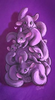 Pile-o-Chinchillas by GoldenDruid