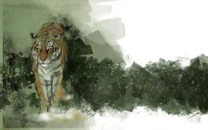 Year of the Tiger 1440x900 by archidisiac